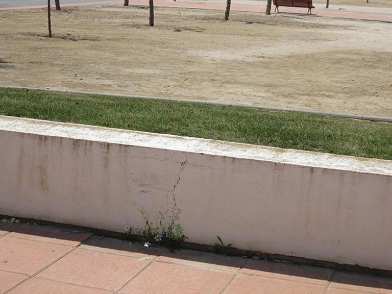 María Ortega Estepa. Jardines en las grietas