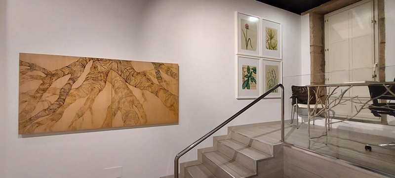 expo feliz encuentro galería Luisa Pita