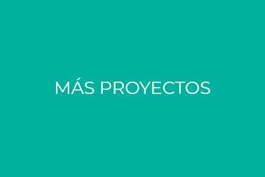 Más proyectos